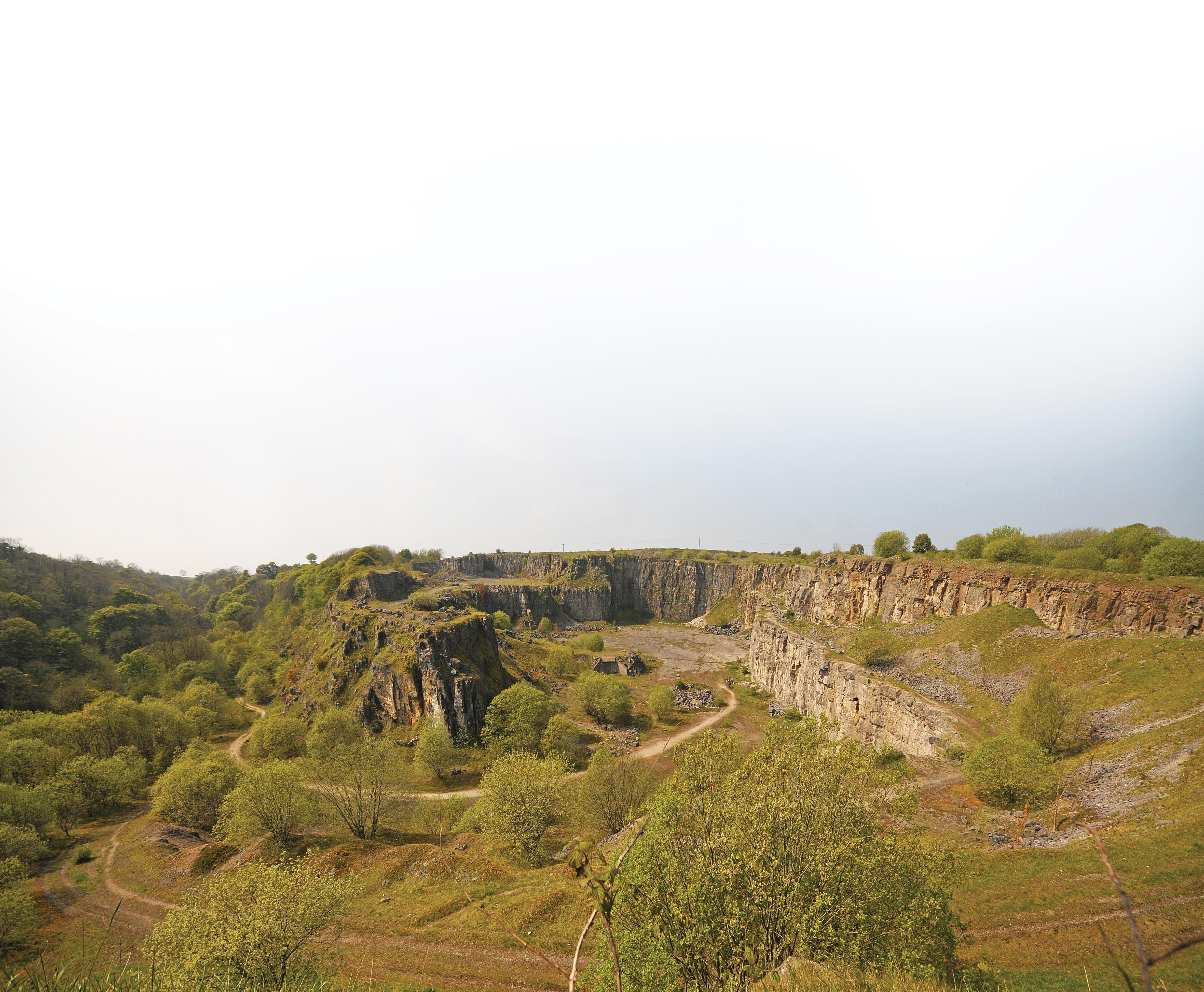 Horseshoe Quarry. (Niall Grimes)
